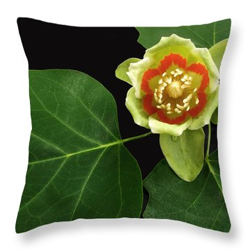 Tulip Bloom Throw Pillow