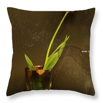 Tulip  Throw Pillow by Chris Berry
