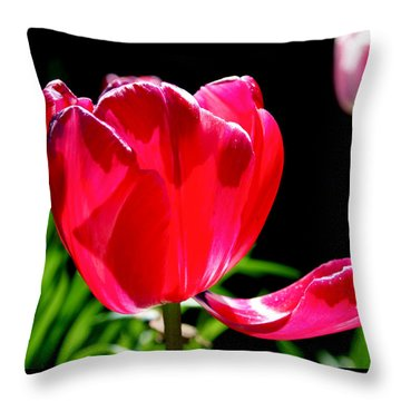 Tulip Extended Throw Pillow by Rona Black