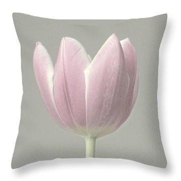 Tulip Fade Throw Pillow
