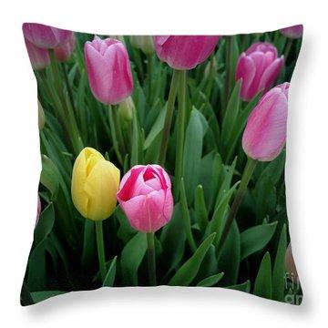 Tulip Festival - 36  Throw Pillow