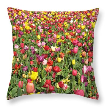 Tulip Field Throw Pillow by Marlene Rose Besso