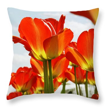 Throw Pillow featuring the photograph Tulip Field 1 by Rudi Prott