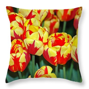 Tulip - Holland Queen  Throw Pillow