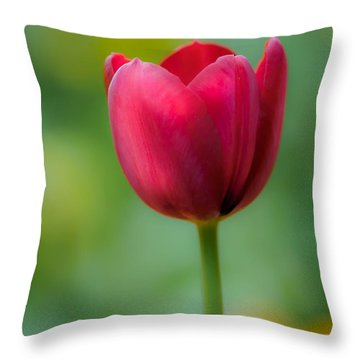 Tulip In Contrast Throw Pillow
