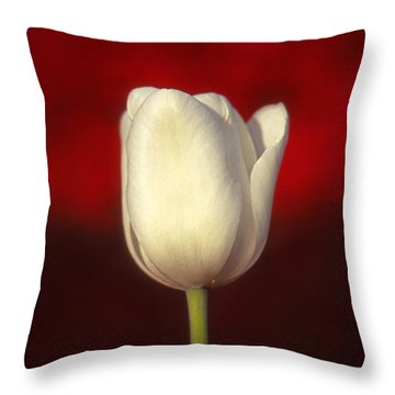 Tulip Throw Pillow by Marion Johnson