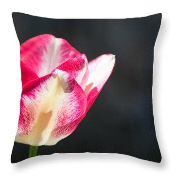 Tulip On Black Throw Pillow