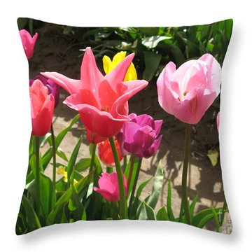 Tulip Portrait Throw Pillow by Marlene Rose Besso