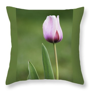 Throw Pillow featuring the photograph Tulip 2 by Ram Vasudev