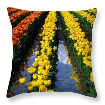 Tulip Reflections Throw Pillow