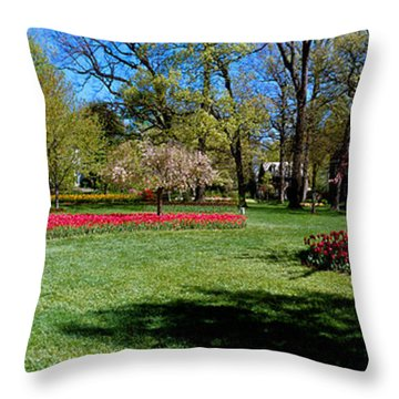 Tulips And Cherry Trees In A Garden Throw Pillow
