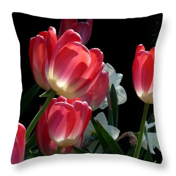 Throw Pillow featuring the photograph Tulips And Daffodils by Lucinda Walter