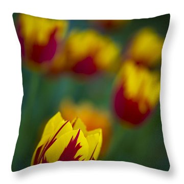 Tulips Throw Pillow by Chevy Fleet