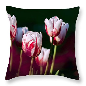 Tulips Garden Flowers Color Spring Nature Throw Pillow by Paul Fearn