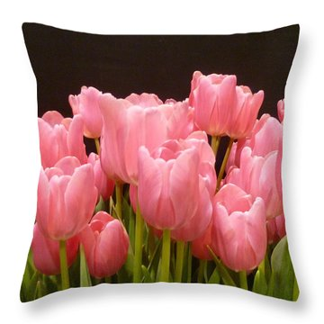 Tulips In Bloom Throw Pillow by Lingfai Leung