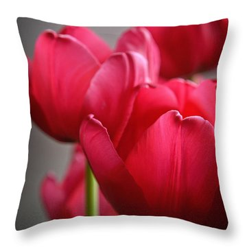 Tulips In The  Morning Light Throw Pillow by Mary Machare