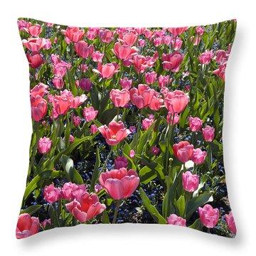 Tulips Throw Pillow by Matthias Hauser