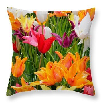 Throw Pillow featuring the photograph Tulips Tulips by Haleh Mahbod
