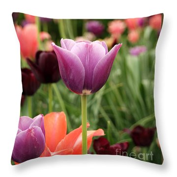 Tulips Welcome Spring Throw Pillow by Eva Kaufman