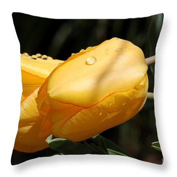 Throw Pillow featuring the photograph Tulips With Drops Of Rain by Trina  Ansel