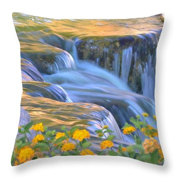 Tumbling Waters Throw Pillow