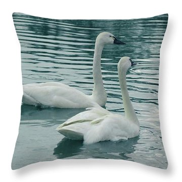 Tundra Swans Throw Pillow by Kathleen Struckle