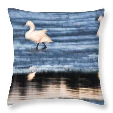 Throw Pillow featuring the photograph Tundra Swans Walking On Ice by Beth Sawickie
