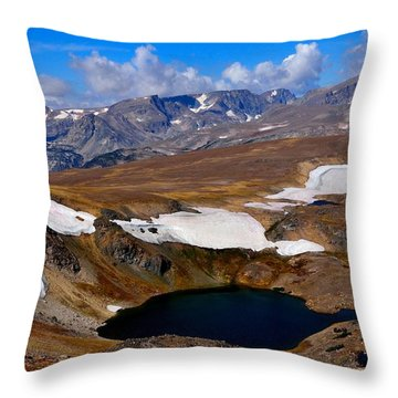 Tundra Tarn Throw Pillow