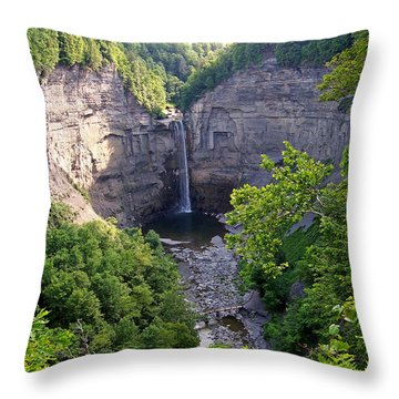 Tunkhannock Falls 2 Throw Pillow
