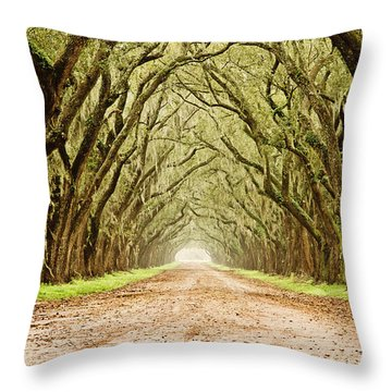 Tunnel In The Trees Throw Pillow by Scott Pellegrin