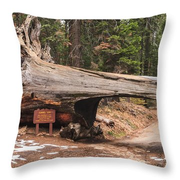 Tunnel Log Throw Pillow