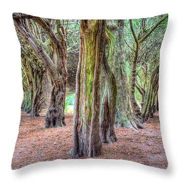 Tunnels Of The Intertwined Throw Pillow by Semmick Photo
