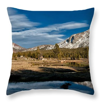 Tuolumne Meadows Throw Pillow by Cat Connor
