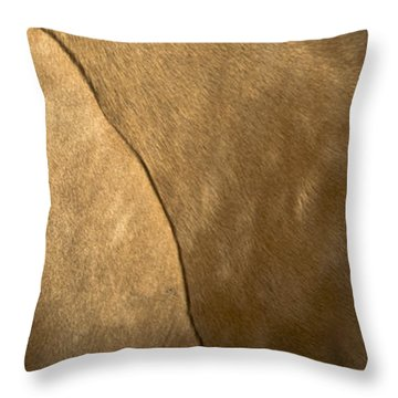 Tupelo 2 Throw Pillow