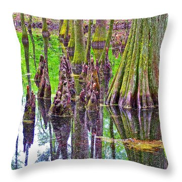 Tupelo/cypress Swamp Reflection At Mile 122 Of Natchez Trace Parkway-mississippi Throw Pillow by Ruth Hager