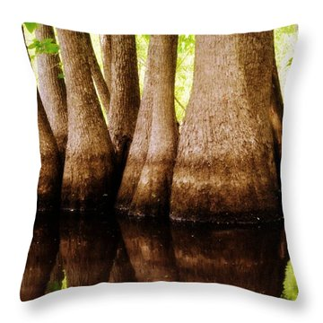 Tupelos Throw Pillow by Marty Koch