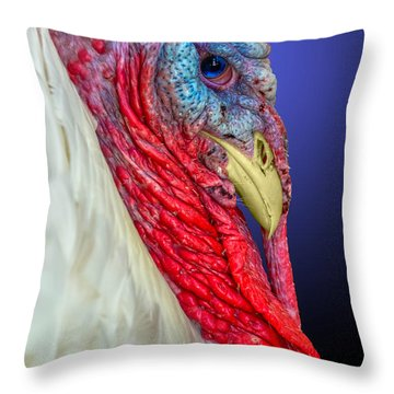 Throw Pillow featuring the photograph Turkey 2 by Brian Stevens