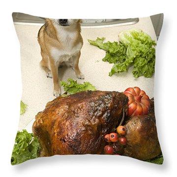 Turkey And Dog Throw Pillow