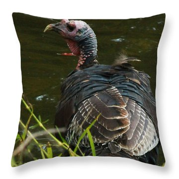 Turkey At Lake Throw Pillow