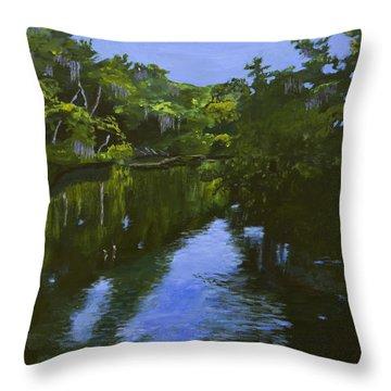 Turkey Creek Throw Pillow by Roger Wedegis