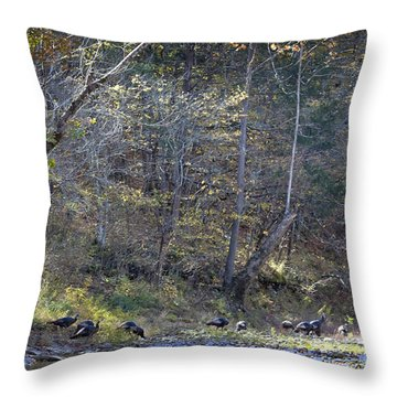 Turkey Crossing At Big Hollow Throw Pillow