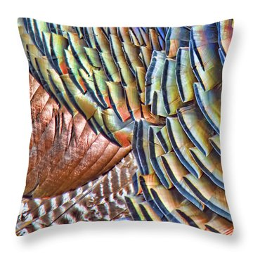 Turkey Feather Colors Throw Pillow
