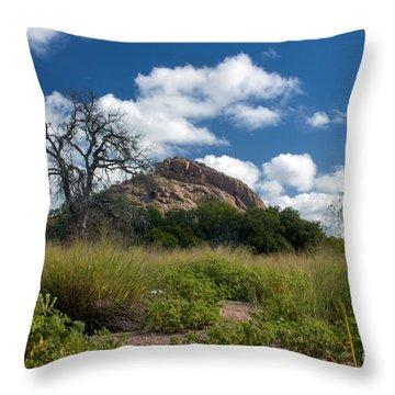 Turkey Hill Throw Pillow