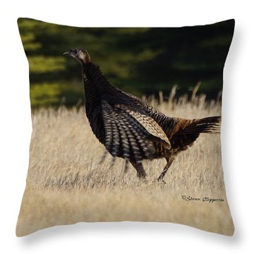 Turkey Throw Pillow by Steven Clipperton