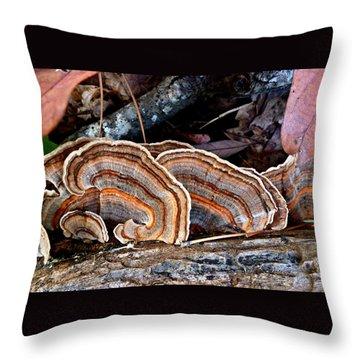 Turkey Tail Fungi In Autumn Throw Pillow