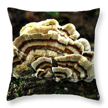 Turkey Tail Fungi Throw Pillow by William Tanneberger