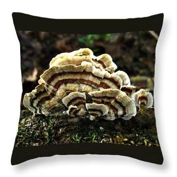 Turkey Tail Fungi Throw Pillow