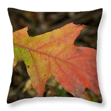 Turn A Leaf Throw Pillow by JAMART Photography