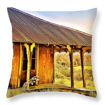 Throw Pillow featuring the photograph Turn Back Time by Wallaroo Images