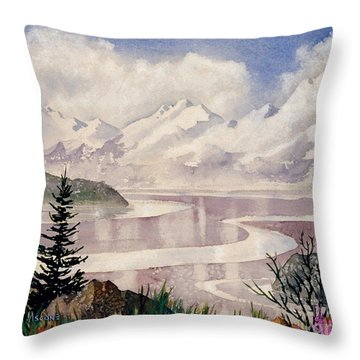 Turnagain Tidal Patterns Throw Pillow